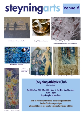 Steyning Arts 2016.pages